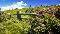 beautiful-farm-landscape